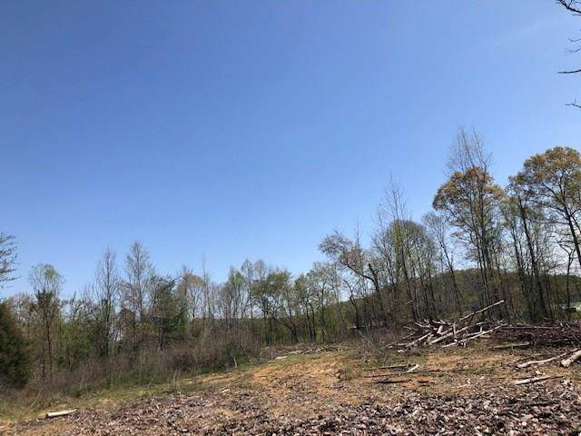 Tract 7 County Road 290 - Photo 1
