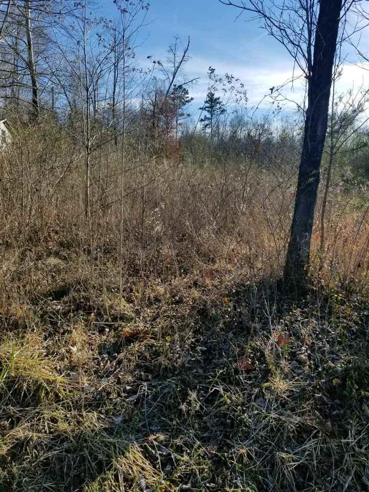 lot #43 Scenic Lakeview Drive - Photo 1