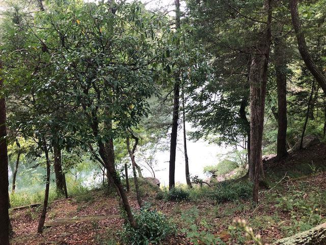 222 Rivers Edge Lane, Benton, TN 37307 (#20185303) :: Billy Houston Group