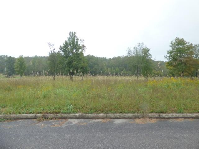 Stump Hollow Road & Royal Crest Drive, Spring City, TN 37854 (#20185842) :: Billy Houston Group