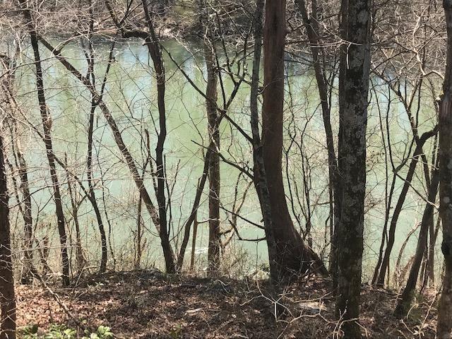 234 Rivers Edge Lane, Benton, TN 37307 (MLS #20191578) :: The Edrington Team