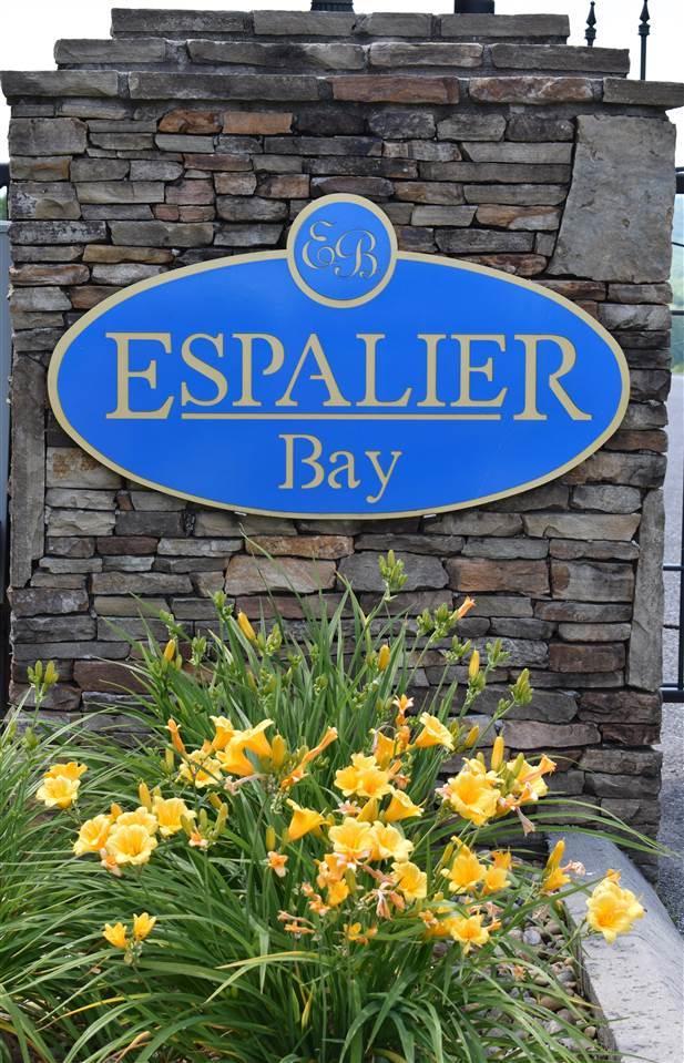 Lot 88 Espalier Drive, Decatur, TN 37322 (#20192962) :: Billy Houston Group