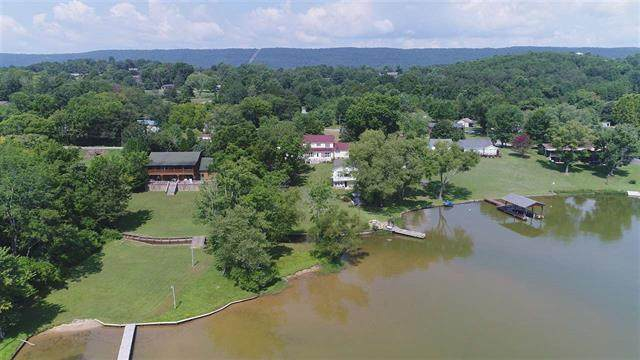 1085 New Lake Road, Spring City, TN 37381 (MLS #20205106) :: The Mark Hite Team