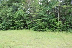0 Hemlock Bluff Way, Deer Lodge, TN 37726 (#20206223) :: Billy Houston Group