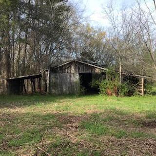 25.48 Acres Benton Pike Ne - Photo 1
