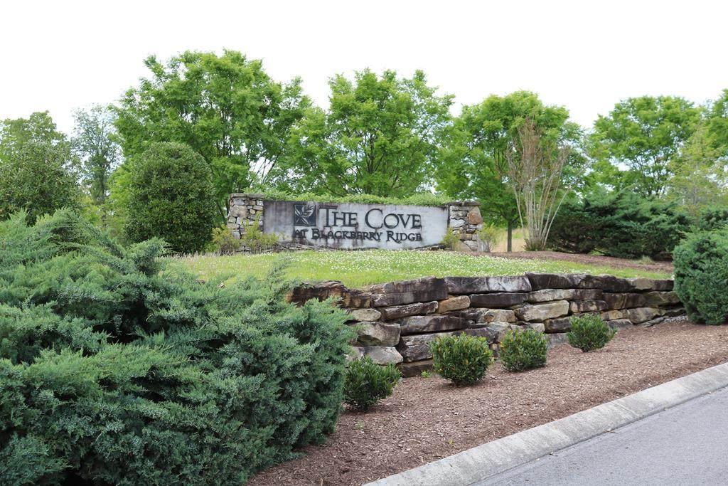 216 Lake Ferry Drive - Photo 1
