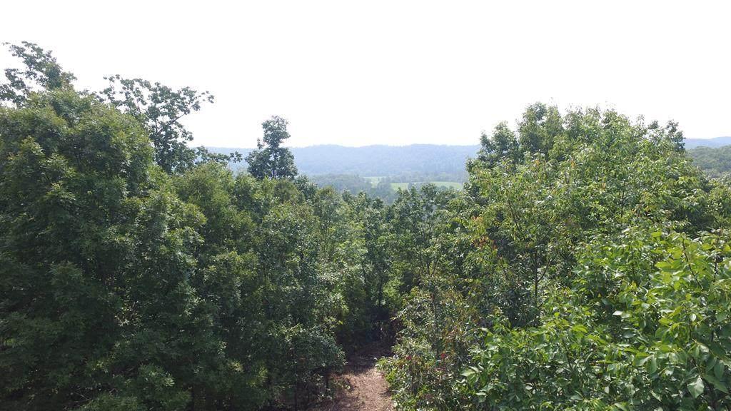 22 Acres Nw Mount Zion Road - Photo 1