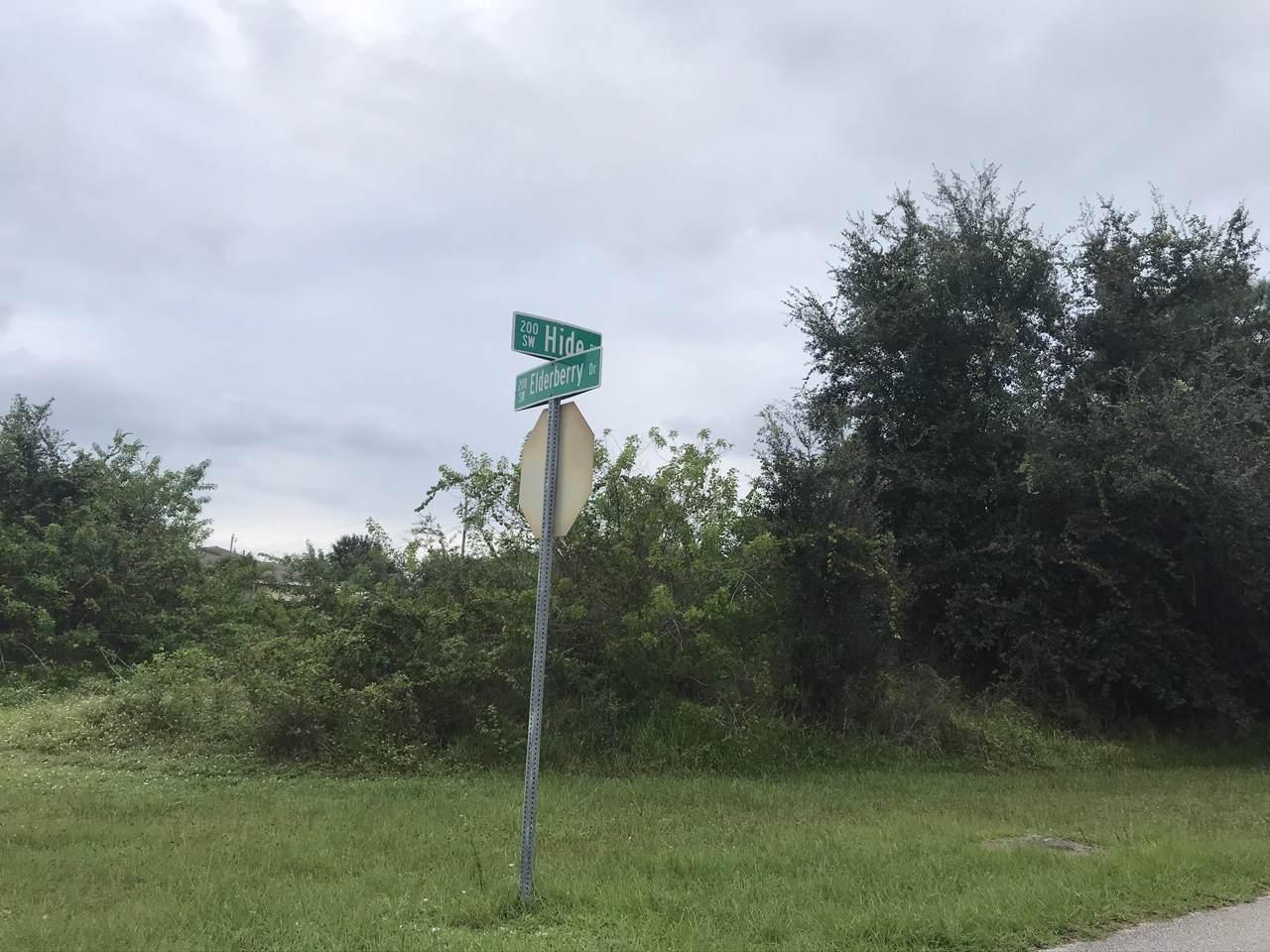 231 Elderberry Drive - Photo 1