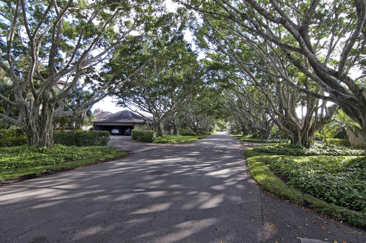 2735 Polo Island Drive - Photo 1