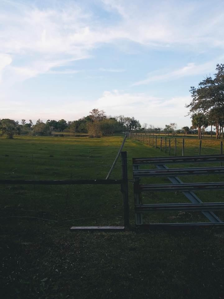 21206 Glades Cut Off - Photo 1
