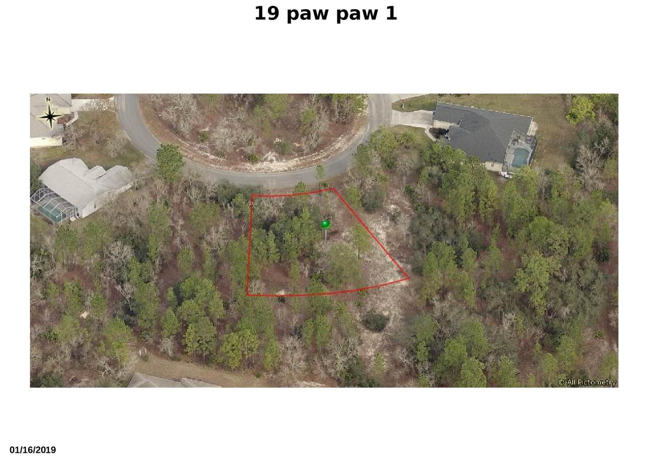 19 Pawpaw Court - Photo 1