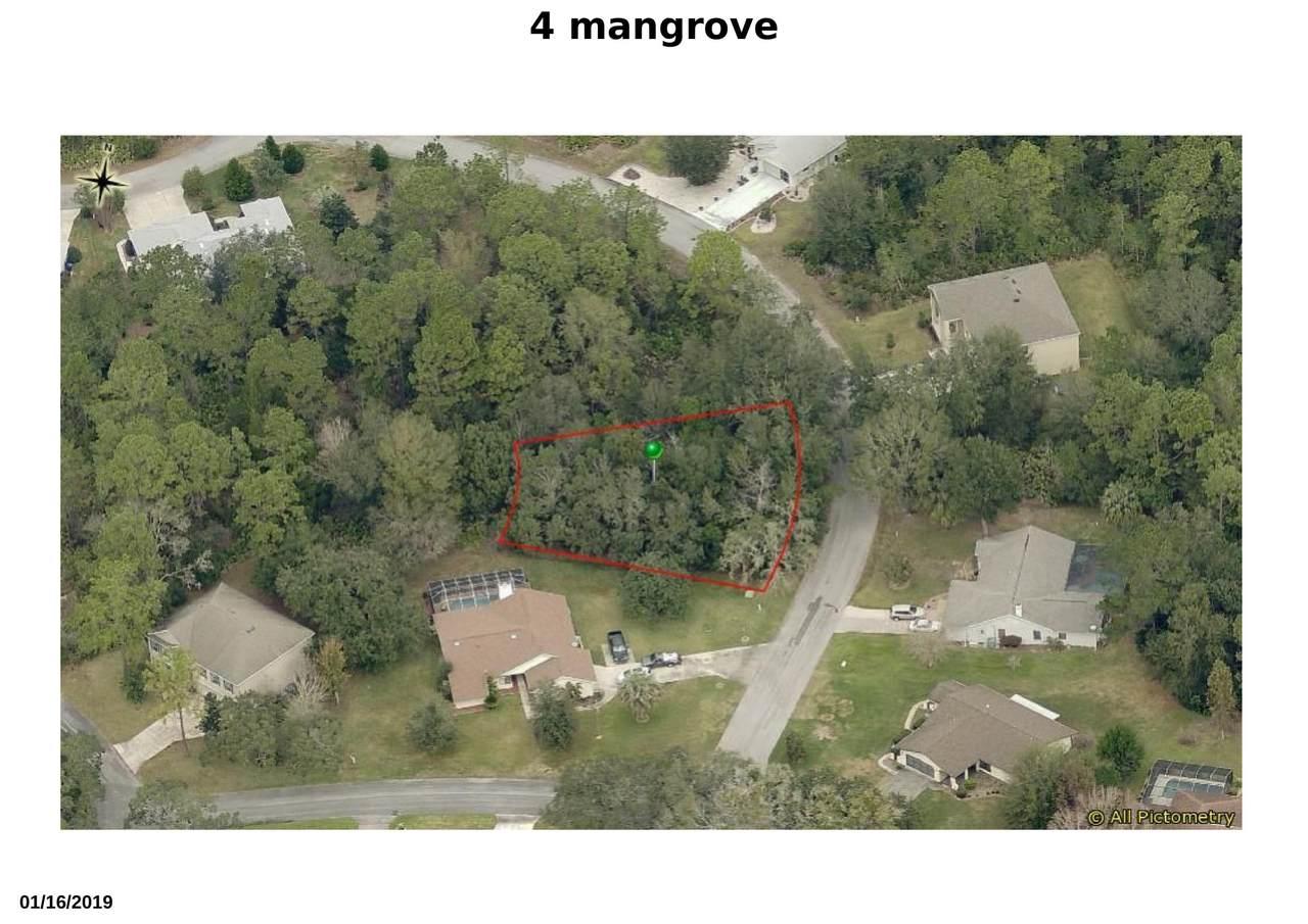 4 Mangrove Court - Photo 1