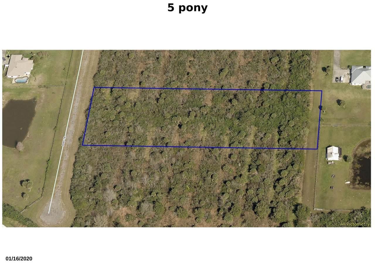 5 Pony Trail - Photo 1