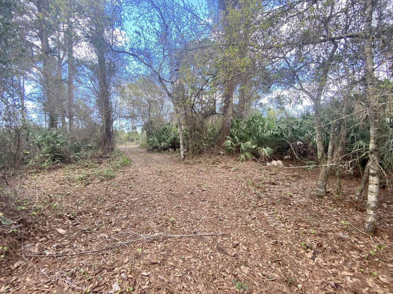 4620 Seminole Road - Photo 1