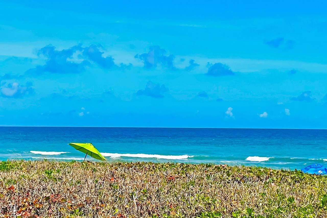 3541 Ocean Boulevard - Photo 1