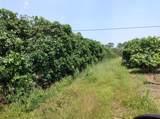 8560 Immokolee Road - Photo 4