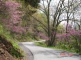 465 Vista View Drive - Photo 6