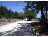 Tbd Seminole Road - Photo 2