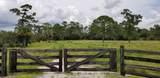 1807 Hunter Drive - Photo 24