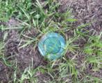 2320 Abalon Circle - Photo 40