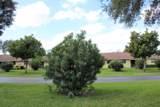 9865 Parkinsonia Tree Trail - Photo 20