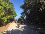 214 Park Shores Circle - Photo 36