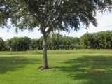 4230 Mango Tree Court - Photo 14