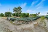 10716 Heritage Farms Road - Photo 4