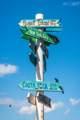 2650 Lake Shore Drive - Photo 48