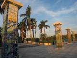 12 Vista Palm Lane - Photo 25