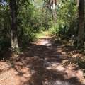 947 Trailside Run - Photo 40