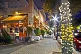 137 Cannery Row Circle - Photo 29