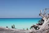 510 Bimini Bahamas - Photo 1