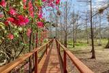 2850 Doe Trail - Photo 1
