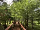 2850 Doe Trail - Photo 24