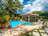72 Vivero Dominican Republic - Casa De C - Photo 46