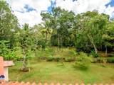 72 Vivero Dominican Republic - Casa De C - Photo 55