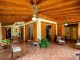 72 Vivero Dominican Republic - Casa De C - Photo 64