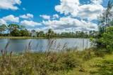 6532 Audubon Trail - Photo 18