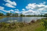 6532 Audubon Trail - Photo 22