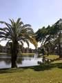 9293 Vista Del Lago - Photo 31