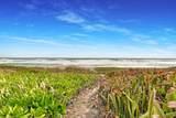 119 Beach Road - Photo 16
