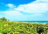 207 Tropic Isle Drive - Photo 21