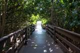 104 Hidden Oak Drive - Photo 66