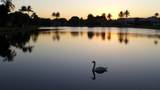 6615 Newport Lake Cir Circle - Photo 32