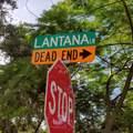 618 Lantana Lane - Photo 9