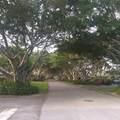 2835 Polo Island Drive - Photo 17