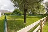 2184 Appaloosa Trail - Photo 18