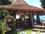 Sailfish Rancho Golfito Costa Rica - Photo 12
