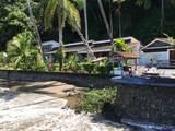 Sailfish Rancho Golfito Costa Rica - Photo 16